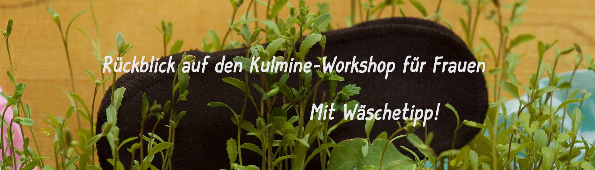 Kulmine-Banner - Workshop / Rückblick