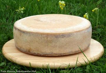 Käsetag: Demeter-Bergkäse - frisch vom Laib geschnitten